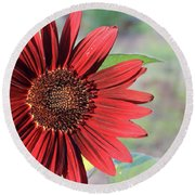 Red Sunflower Round Beach Towel