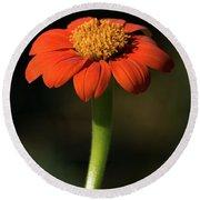 Red Sunflower Round Beach Towel