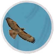 Red Tail Round Beach Towel