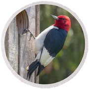 Red-headed Woodpecker 2018  Round Beach Towel
