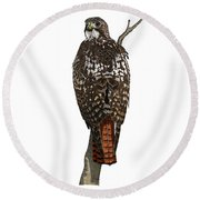 Red-tailed Hawk - Color Round Beach Towel