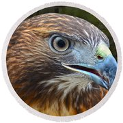 Red-tailed Hawk Portrait Round Beach Towel
