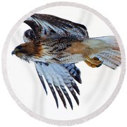 Red-tailed Hawk Winter Flight Round Beach Towel by Mike Dawson