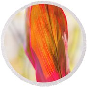 Red Ti Leaves 07 Round Beach Towel