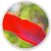 Red Ti Leaves 08 Round Beach Towel