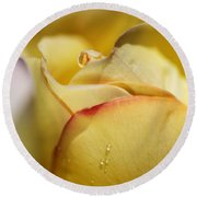 Red Tipped Yellow Rose Round Beach Towel