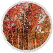 Round Beach Towel featuring the photograph Red Trees by Iris Greenwell