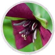 Red Trillium.. Round Beach Towel