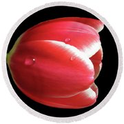 Red Tulip 3 Round Beach Towel