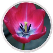 Red Tulip Blossom With Stamen And Petals And Pistil Round Beach Towel