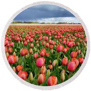 Red Tulip Field Round Beach Towel