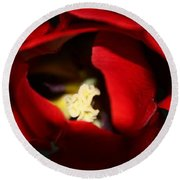 Round Beach Towel featuring the photograph Red Tulip by Jolanta Anna Karolska