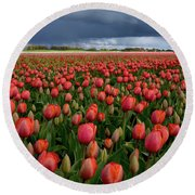 Red Tulips Field Round Beach Towel by Mihaela Pater