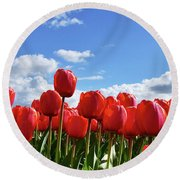 Red Tulips Front Row Round Beach Towel by Mihaela Pater