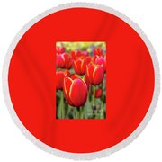 Red And Yellow Tulips I Round Beach Towel
