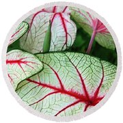 Red White And Green Round Beach Towel