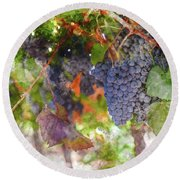 Red Wine Grapes On The Vine In Wine Country Round Beach Towel