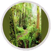 Red Woods Trail Round Beach Towel