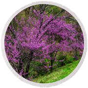 Redbud And Path Round Beach Towel