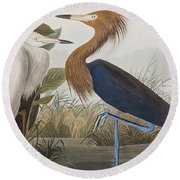 Reddish Egret Round Beach Towel by John James Audubon