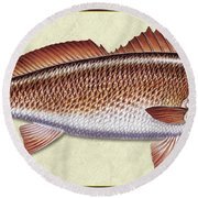 Redfish Id Round Beach Towel