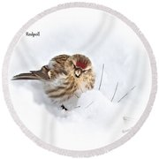 Redpoll Round Beach Towel