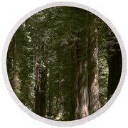 Redwood Highway Round Beach Towel