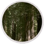 Redwood Highway Round Beach Towel