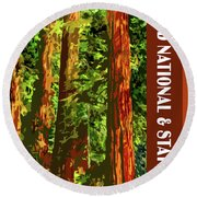 Redwood National Park Round Beach Towel by Chuck Mountain