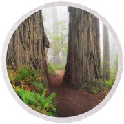 Redwood Trail Round Beach Towel