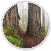 Redwood Trail Round Beach Towel