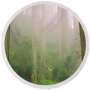 Redwoods Fog Round Beach Towel