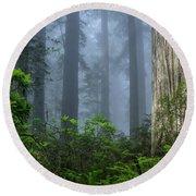 Redwoods In Blue Fog Round Beach Towel