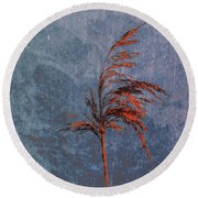 Reed #f9 Round Beach Towel