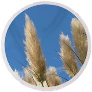 Reeds Against Sky Round Beach Towel