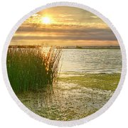 Reeds In The Sunset Round Beach Towel