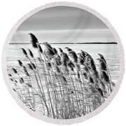 Reeds On A Frozen Lake Round Beach Towel
