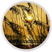 Reedy Sunrise Round Beach Towel