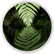 Reflected Ferns Round Beach Towel