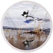 Reflecting Magpie Round Beach Towel