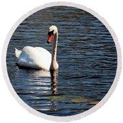 Reflecting Swan Round Beach Towel