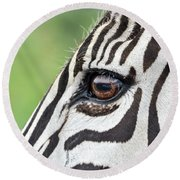 Reflection In A Zebra Eye Round Beach Towel