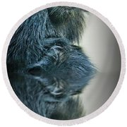 Round Beach Towel featuring the photograph Reflection Of A Francois Langur Monkey  by Jim Fitzpatrick