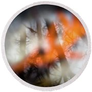 Reflection Of Trees Over An Oak Leaf Encased In Water And Ice Round Beach Towel