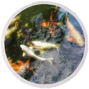 Reflections And Fish 6 Round Beach Towel