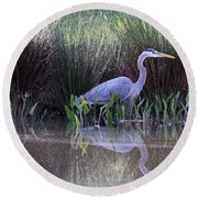 Reflections At Nassau Grove Round Beach Towel by Allan Levin