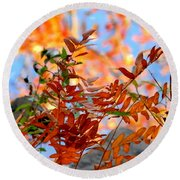 Round Beach Towel featuring the photograph Reflections by Elfriede Fulda