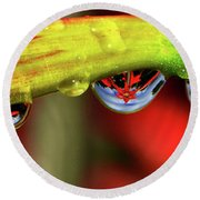 Reflections - Flowers In A Raindrop 001 Panorama Round Beach Towel