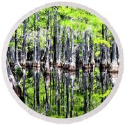 Round Beach Towel featuring the photograph Reflections Of A Cypress Forest by Tara Potts
