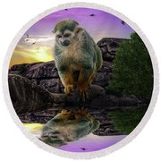 Reflections Of A Squirrel Monkey Round Beach Towel by Rob Sellers